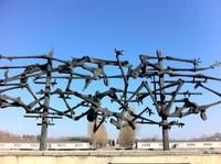 Private Tour: Dachau Concentration Camp Tour from Munich Photos