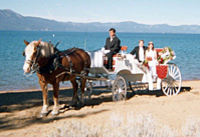 Private Tour: Lake Tahoe Carriage Ride Photos