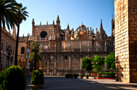Private Tour: Seville Day Trip from Granada Photos