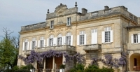 Private Tour: Wine Harvest and Tasting Trip from Bordeaux Photos