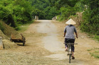Quang Dien Village Bike Tour Including Sampan Cruise Photos