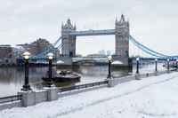 River Thames Christmas Cruise with Lunch or Afternoon Tea Photos