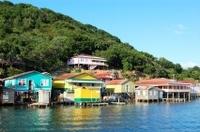 Roatan Shore Excursion: Mangrove Cruise Photos
