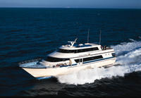 Round-trip Ferry Service from Dana Point to Catalina Island Photos