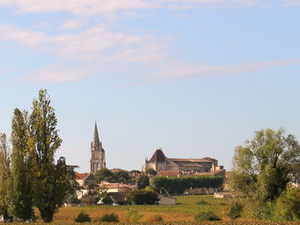 Small-Group Saint-Emilion and Pomerol Day Trip from Bordeaux Photos