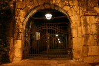 San Antonio City Lights Ghost Tour by Segway  Photos