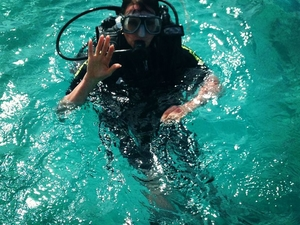 Great Barrier Reef Luxury Snorkel and Dive Cruise from Cairns Photos