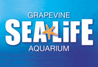 SEA LIFE Aquarium Dallas Photos