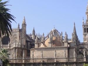 Seville Card Photos