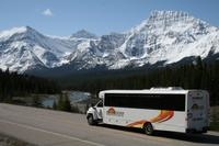 Shared Transfer: Jasper to Edmonton Airport or Edmonton Mall