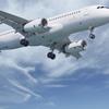 Sharm el Sheikh Airport Private Arrival Transfer