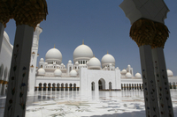 Sheikh Zayed Mosque and Falcon Hospital Tour in Abu Dhabi Photos