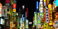 Shinjuku and Kabukicho Evening Walking Tour Photos