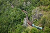 Skip the Line: Kuranda Scenic Railway Gold Class and Skyrail Rainforest Cableway Photos
