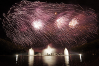 Skip the Line: Palace of Versailles Tour with Night Fountain Show Photos