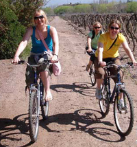 Small-Group Bike Tour in Mendoza Wine Country Photos