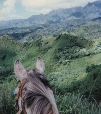 Small-Group Horseback-Riding Tour for Experienced Riders Photos