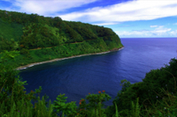 Small-Group Road to Hana Luxury Tour Photos