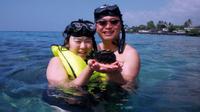 Small-Group Snorkeling Adventure from Kona Photos