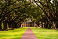 Small-Group Tour of Oak Alley and Laura Plantation from New Orleans Photos