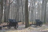 Small-Group WWI Day Trip from Paris: Aisne-Marne Battlefields, Belleau Wood and Museum of the Great War Photos