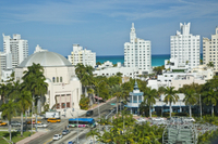 South Beach Arts and Culinary Tour in Miami Photos