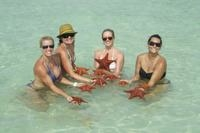 Starfish Beach and Stingray City Jet Ski Tour in Grand Cayman Photos