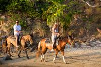 St Kitts Rainforest Horseback Riding Tour Photos