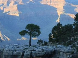 2-Day Grand Canyon Tour from Phoenix Photos