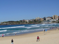 Sydney: Bondi Beach and Kings Cross Tour plus Sydney Harbour Lunch Cruise Photos