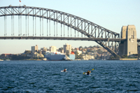 Sydney Harbour Kayak Tours Photos
