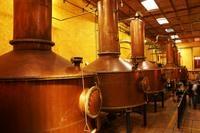 Tequila Day Trip: Herradura Tequila Distillery Photos