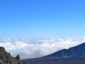 Small-Group Maui Tour: Haleakala National Park, Lavender Farm and Wine Tasting Photos
