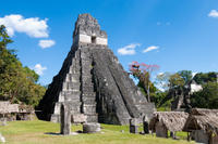 Tikal Day Trip from San Ignacio Photos