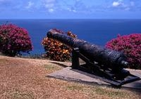 Tobago Island Sightseeing and Plantation Tour Photos