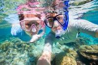 Trindade Fishing Village, Beach Trek and Snorkeling Tour from Paraty Photos