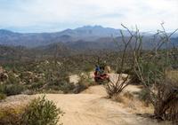 U-Drive ATV Tour in the Sonoran Desert Photos