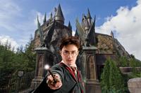 Universal Orlando 3-Park Unlimited Ticket Photos