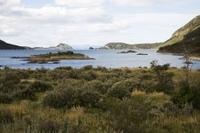 Ushuaia Shore Excursion: Private Tour of Tierra del Fuego National Park Photos