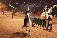 Valltordera Castle Medieval Tournament and Flamenco Show with Optional Dinner Photos