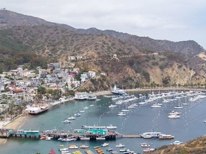 Catalina Island Day Trip Photos