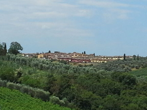 Tuscany Bike Tour from Florence Photos