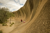 Wave Rock, York, Wildflowers and Aboriginal Cultural Tour from Perth Photos