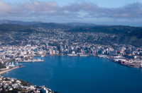 Wellington Shore Excursion: City Sightseeing Tour Photos