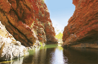 West MacDonnell Ranges Half-Day Tour with Optional Alice Springs Desert Park Photos