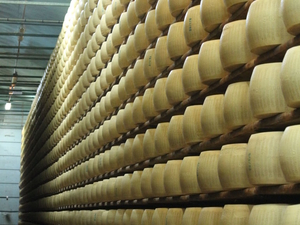 Emilia Romagna Day Trip: Museo Ferrari with Optional Test Drive, Balsamic Vinegar Tour and Parmigiano-Reggiano Cheese Factory Photos