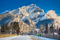 Winter Tour: Banff and its Wildlife Photos