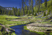 Yellowstone National Park Small-Group Wildlife Safari by Jeep Photos