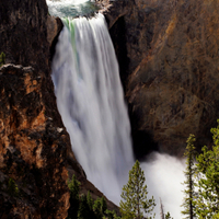Yellowstone National Park Tour from Jackson  Photos