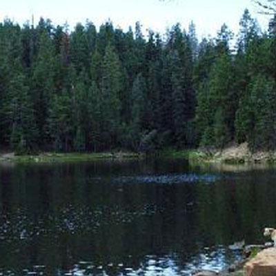 Bear canyon lake arizona united states tourist information for Canyon lake az fishing